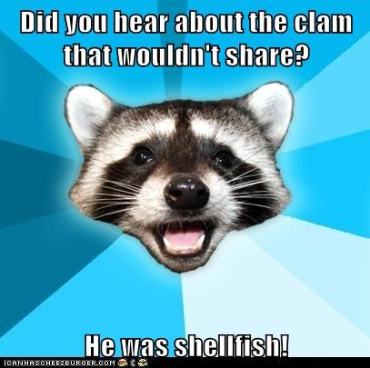 Animal Memes: Lame Pun Coon - Come Out of Your Shell