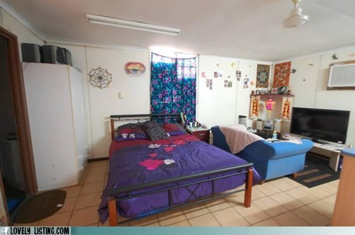bed,couch,one room,small,studio