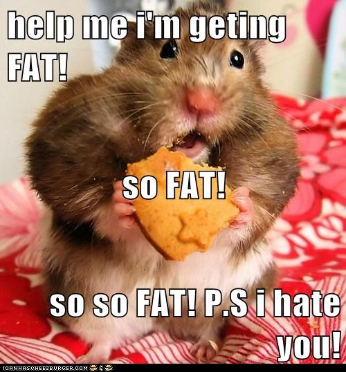 help me i'm geting FAT! so FAT! so so FAT! P.S i hate you!