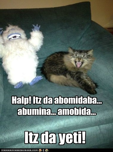 abominable snowman,attack,captions,Cats,christmas,danger,scary,snowman,winter,yeti