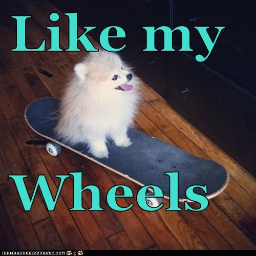Like my  Wheels