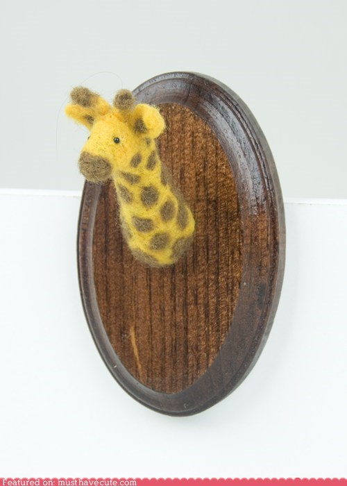 bust,felt,giraffes,mounted,taxidermy