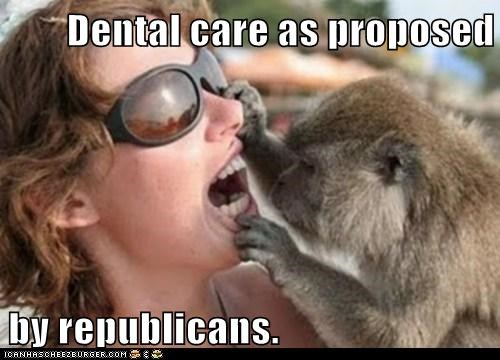 Dental care as proposed  by republicans.
