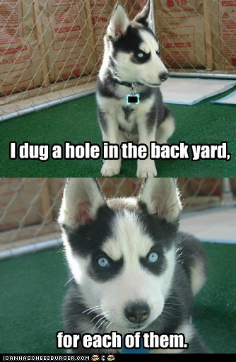I dug a hole in the back yard,