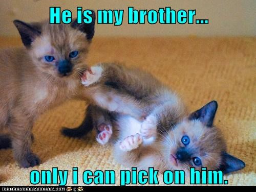 He is my brother...  only i can pick on him.