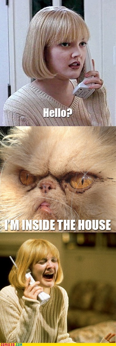 cat,From the Movies,im-inside-the-house,Memes,scream
