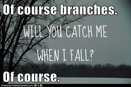 Of course branches.  Of course.