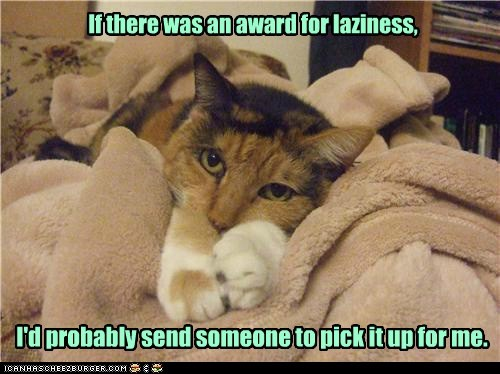 Lolcats: If there was an award for laziness,