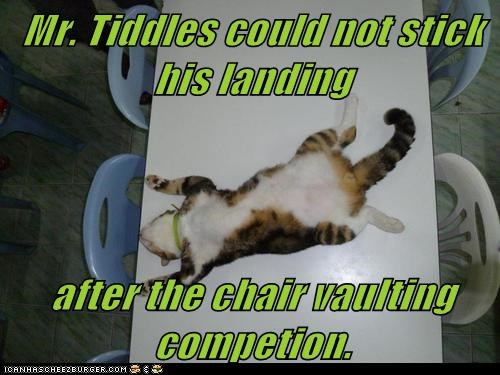 Mr. Tiddles could not stick his landing