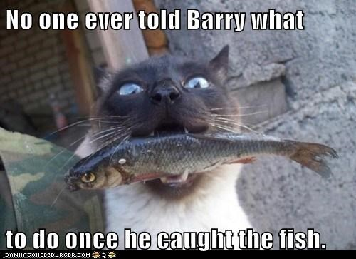 No one ever told Barry what  to do once he caught the fish.