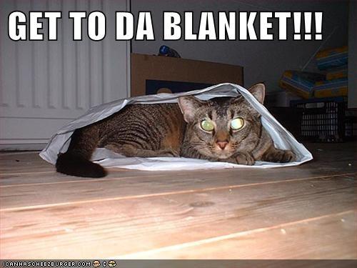 GET TO DA BLANKET!!!