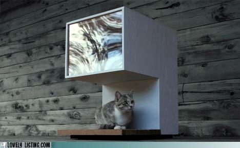 Modern Kitty Luxury