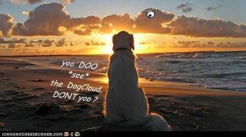 yoo  DOO *see*the  DogCloud, DONT yoo ?