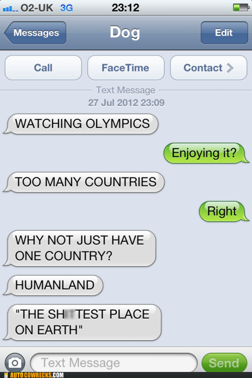 Autocowrecks: I Guess Dog Doesn't Like the Olympics