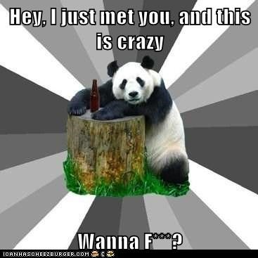 "Animal Memes: Pickup Line Panda - There Is No ""Maybe"""