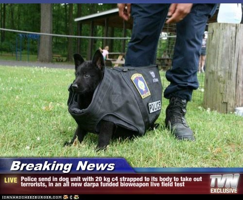 Breaking News - Police send in dog unit with 20 kg c4 strapped to its body to take out terrorists, in an all new darpa funded bioweapon live field test