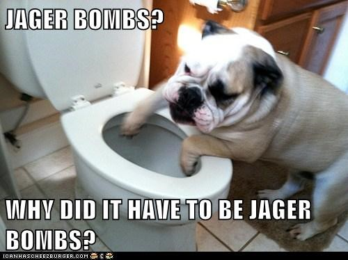 JAGER BOMBS?  WHY DID IT HAVE TO BE JAGER BOMBS?