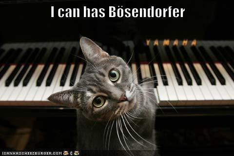 I can has Bösendorfer