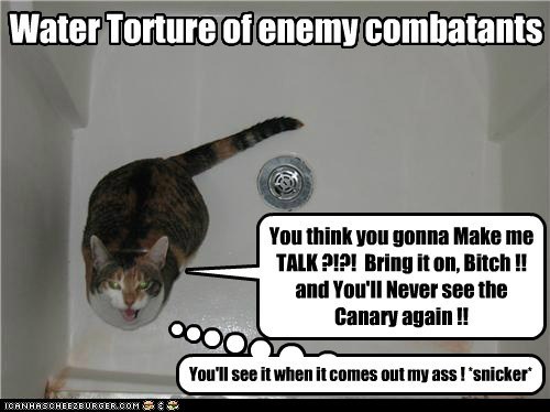 Water Torture of enemy combatants