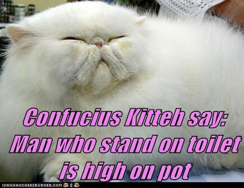 Confucius Kitteh say:                               Man who stand on toilet is high on pot