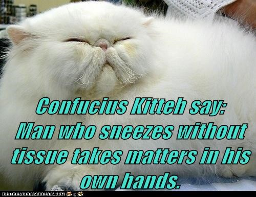 Confucius Kitteh say:          Man who sneezes without tissue takes matters in his own hands.