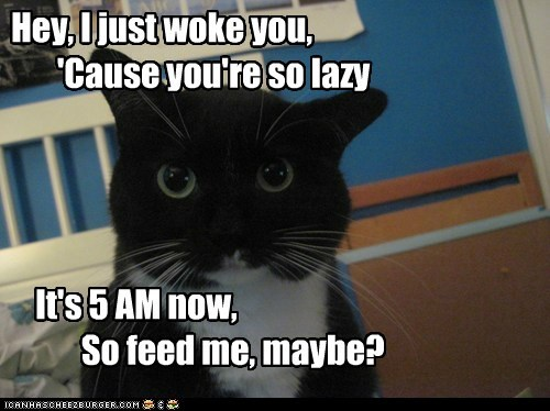 Actually, no. Not maybe. Feed me now.