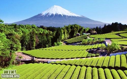 Japan,mother nature ftw,mt-fuji,photography,Travel,wincation