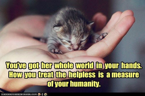 You've  got  her  whole  world  in  your  hands. How  you  treat  the  helpless  is  a measure  of your humanity.