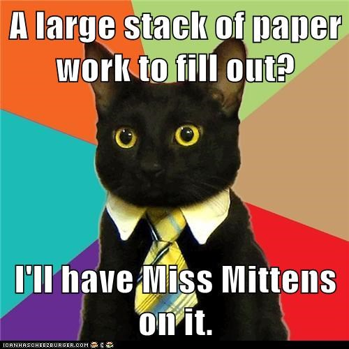 A large stack of paper work to fill out?  I'll have Miss Mittens on it.
