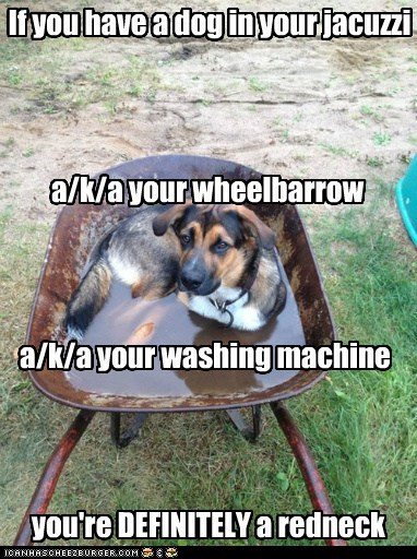 dogs,puddle,what breed,wheelbarrow,You Might Be A Redneck