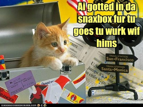 captions,Cats,lunch,lunchbox,snackbox,snowaway,work