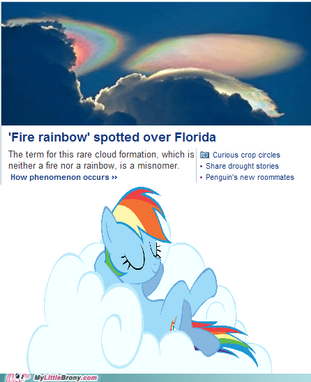 Thanks for Visiting Rainbow Dash