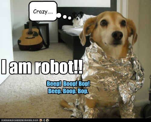 Robot Dog!