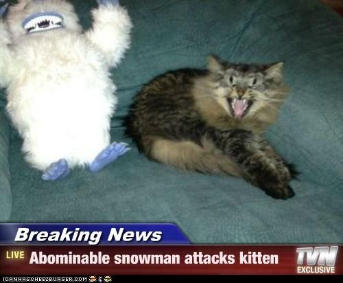 Breaking News - Abominable snowman attacks kitten