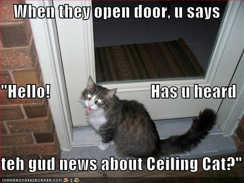 "When they open door, u says ""Hello!                              Has u heard  teh gud news about Ceiling Cat?"""
