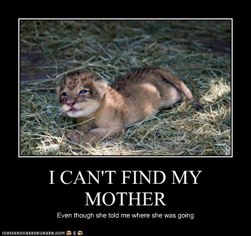 I CAN'T FIND MY MOTHER