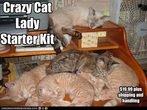 19.95,captions,cat lady,Cats,crazy,kit,order,starter kit