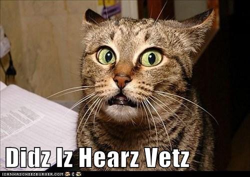 Didz Iz Hearz Vetz