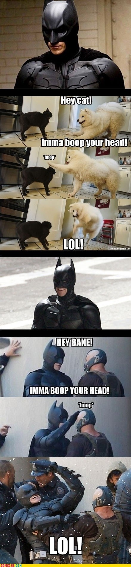 Where Batman Gets His Fight Moves From