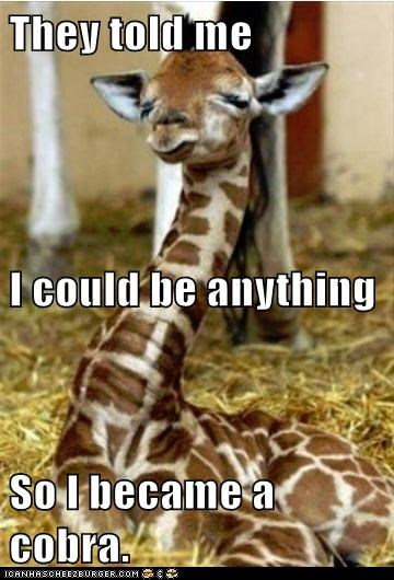 Dream Big, Little Girafflet