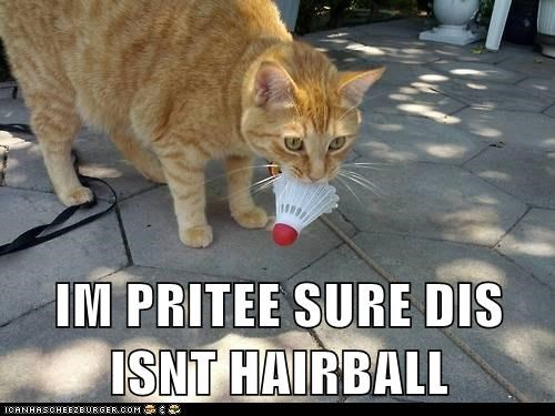 IM PRITEE SURE DIS ISNT HAIRBALL