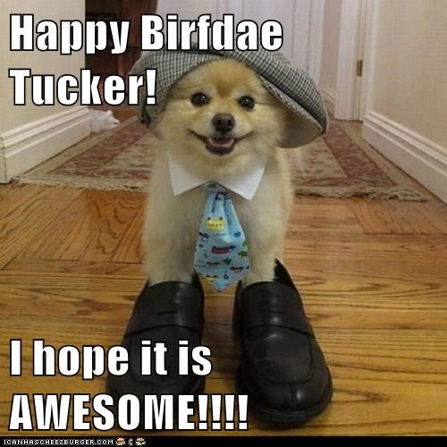 Happy Birfdae Tucker!  I hope it is AWESOME!!!!