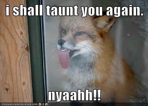 again,fox,glass,sticking tongue out,taunting,window