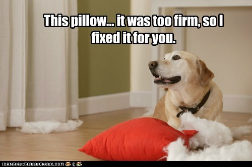 This pillow... it was too firm, so I fixed it for you.