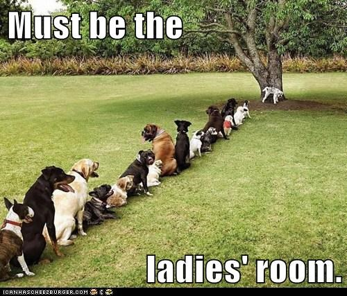Must be the  ladies' room.