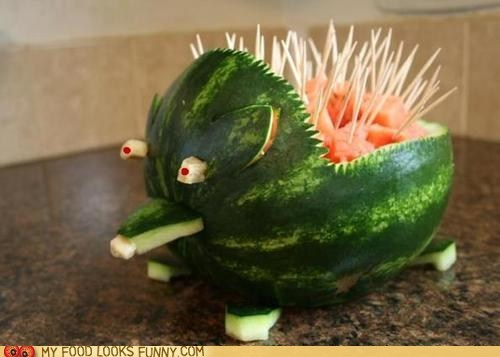 Watermelon Porcupine