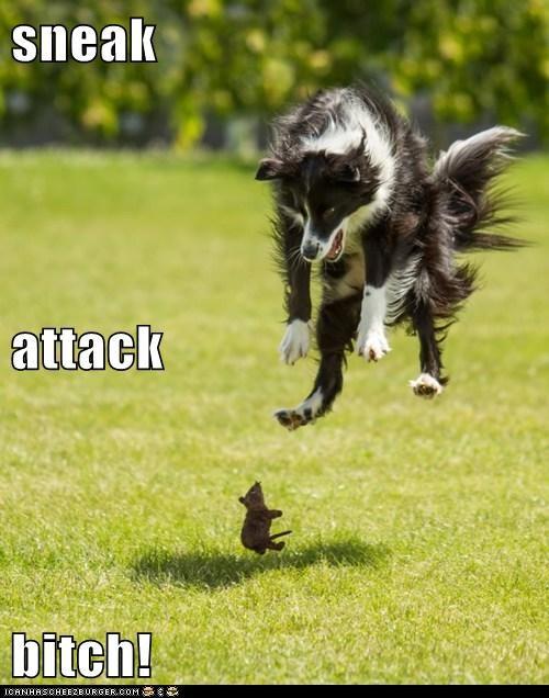sneak  attack bitch!