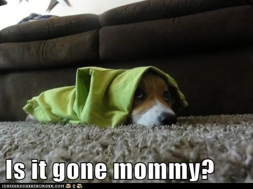 Is it gone mommy?