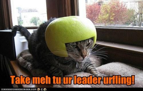 Take me tu ur leader