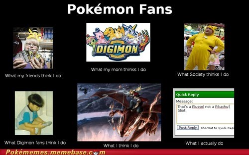 What People Think I Do: Pokémon Fans